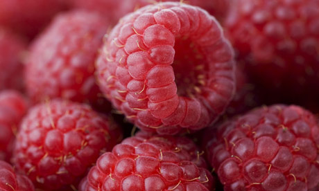 Ethyl formate, which gives raspberries their flavour and smells of rum, has now been found in deep space. Photograph: Tim Graham/Getty